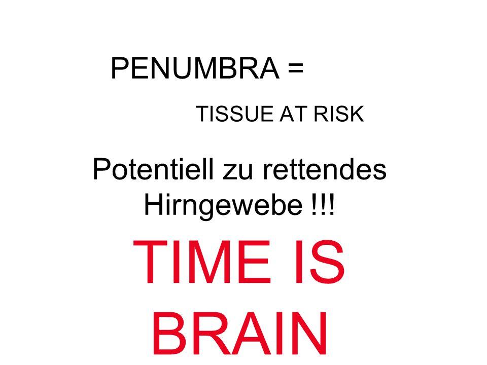 Potentiell zu rettendes Hirngewebe !!!