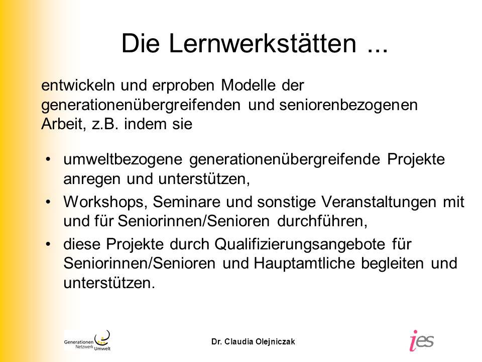 Die Lernwerkstätten ... entwickeln und erproben Modelle der generationenübergreifenden und seniorenbezogenen Arbeit, z.B. indem sie.