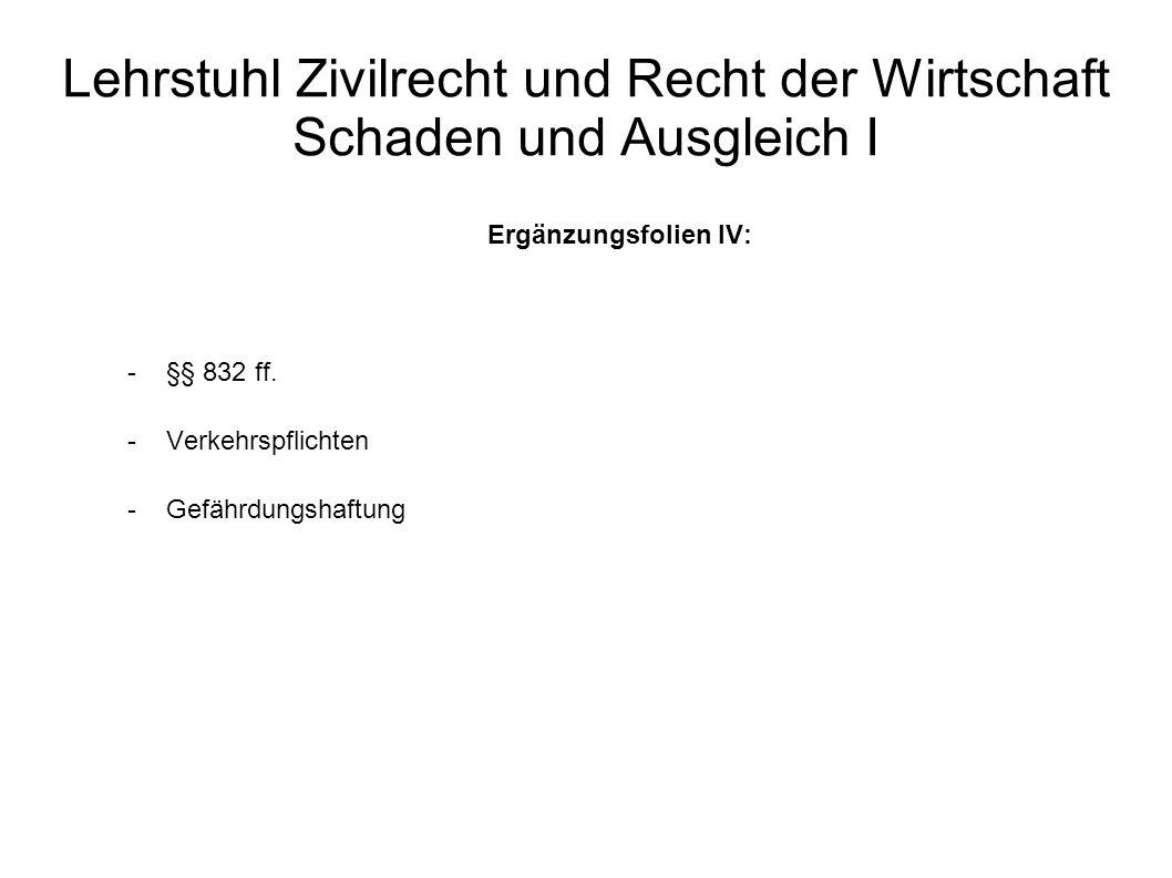 Lehrstuhl Zivilrecht und Recht der Wirtschaft Schaden und Ausgleich I