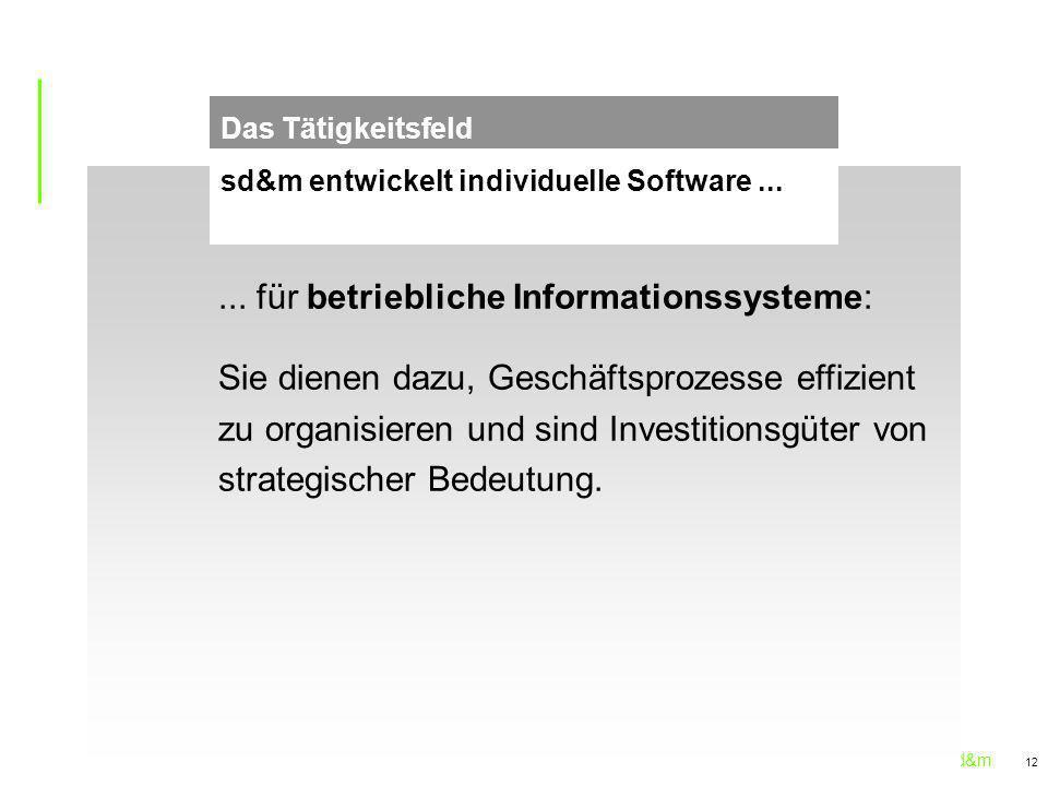 ... für betriebliche Informationssysteme: