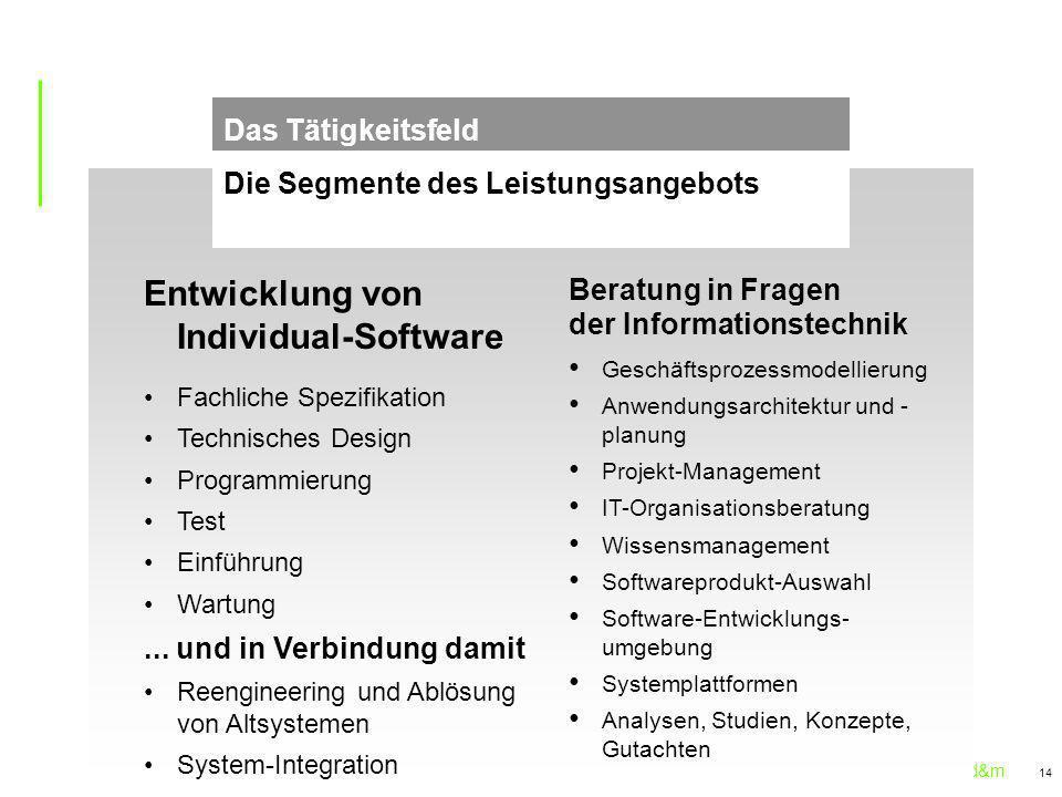 Entwicklung von Individual-Software