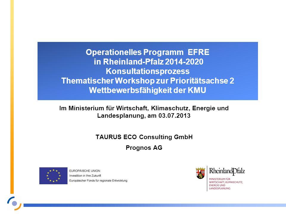TAURUS ECO Consulting GmbH
