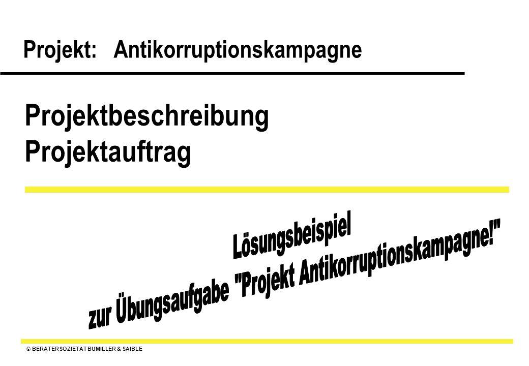 Projektbeschreibung Projektauftrag