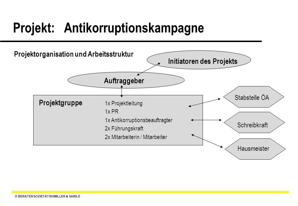 Projektorganisation und Arbeitsstruktur Initiatoren des Projekts