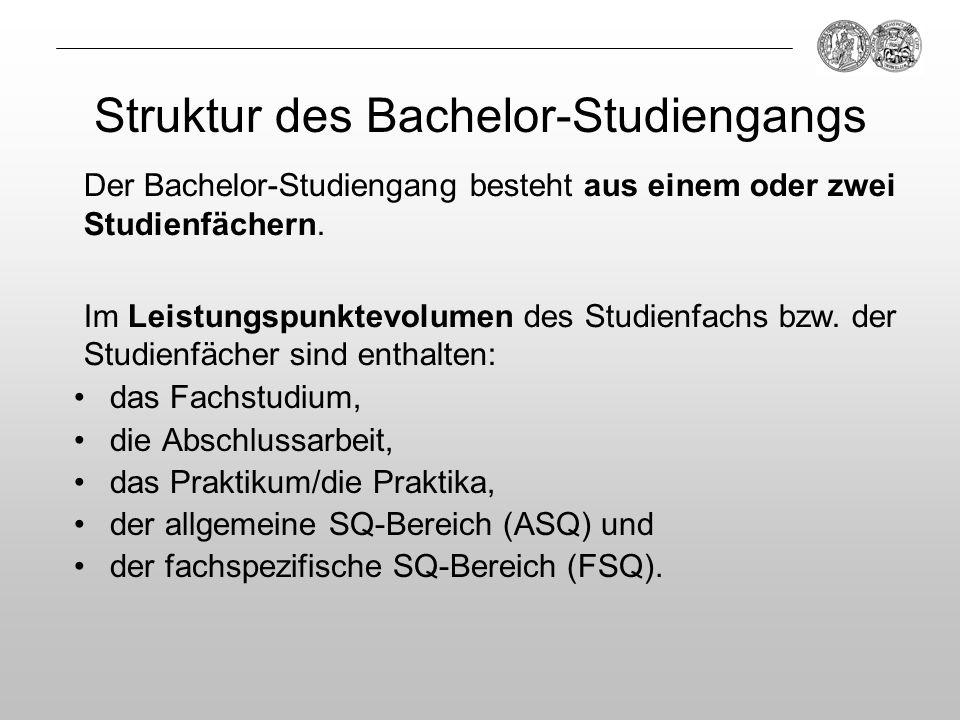 Struktur des Bachelor-Studiengangs