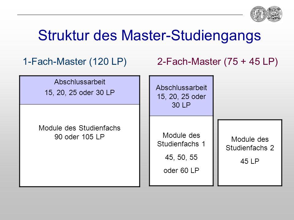 Struktur des Master-Studiengangs