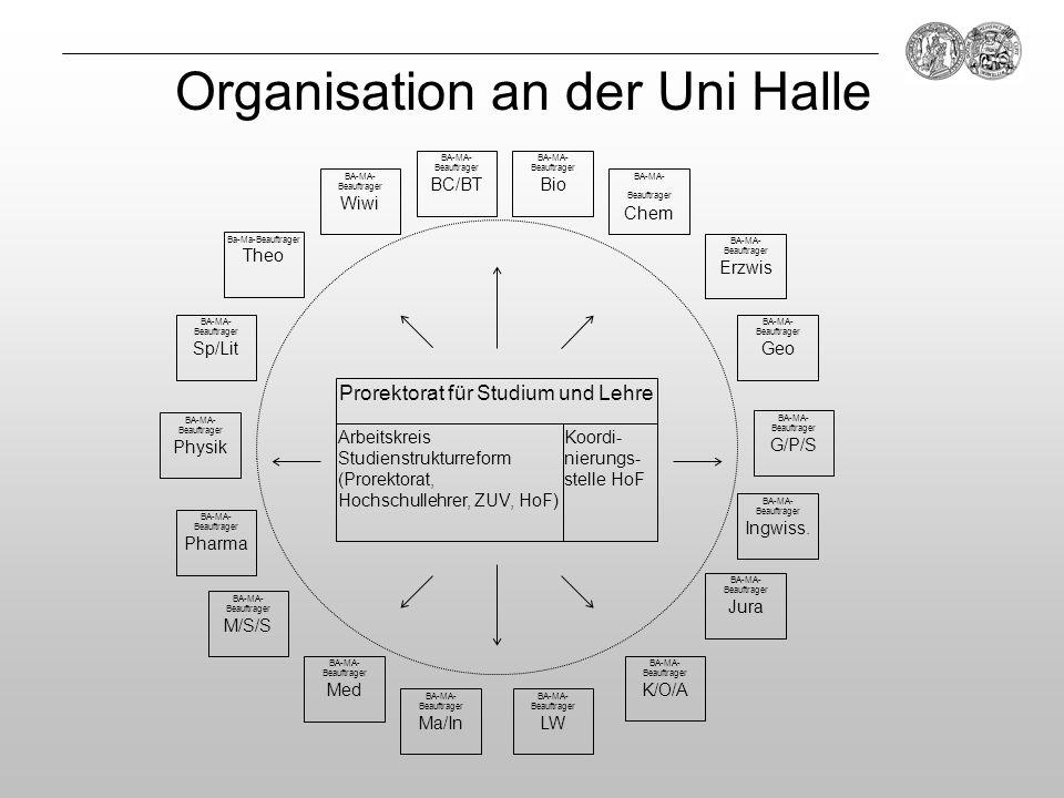 Organisation an der Uni Halle