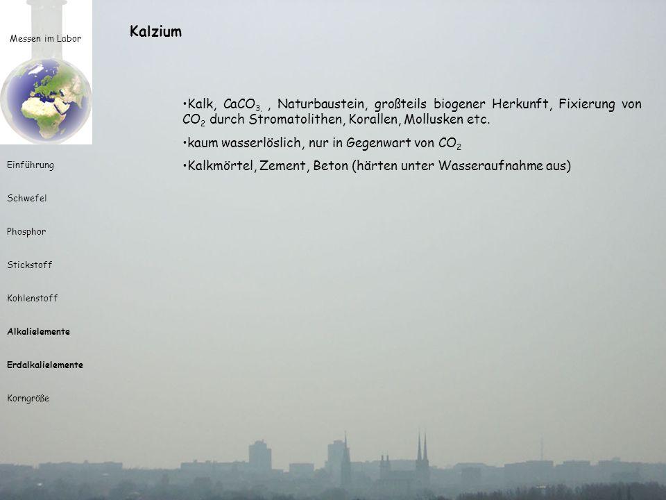 Kalzium Messen im Labor. Kalk, CaCO3, , Naturbaustein, großteils biogener Herkunft, Fixierung von CO2 durch Stromatolithen, Korallen, Mollusken etc.