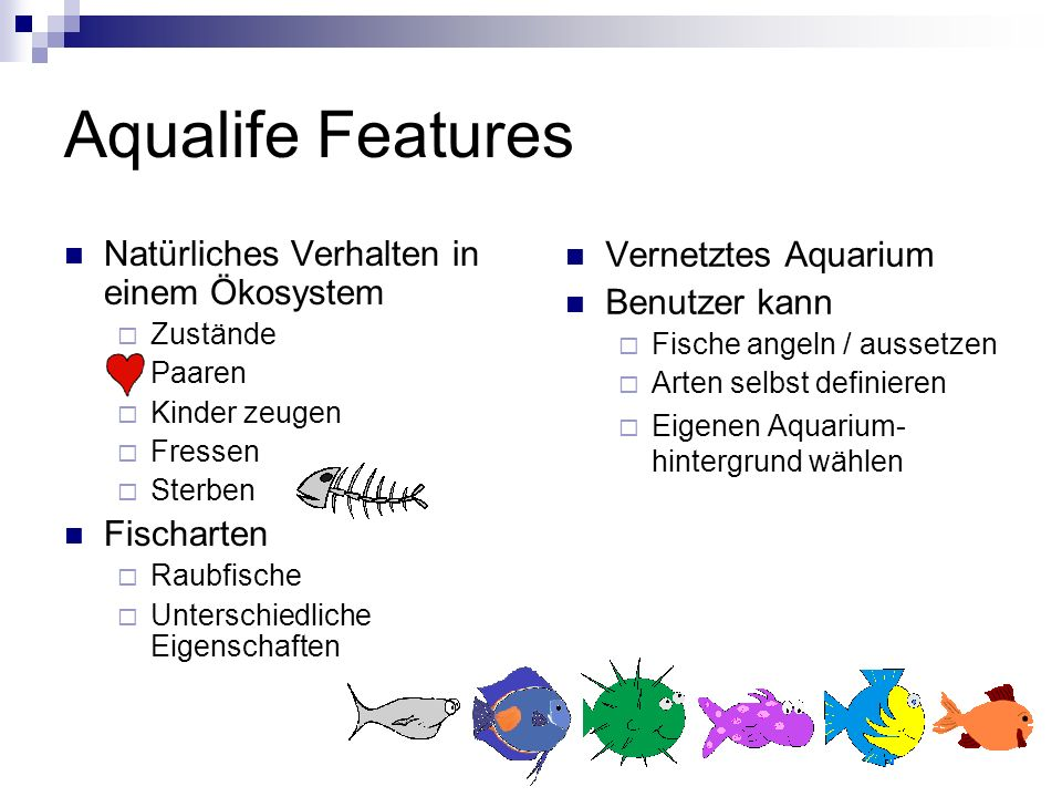 Aqualife Features Natürliches Verhalten in einem Ökosystem