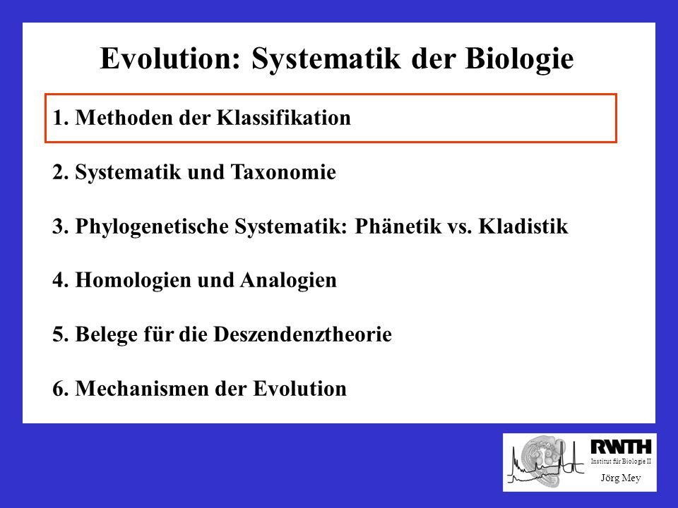 Evolution: Systematik der Biologie