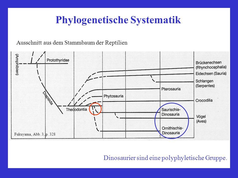 Phylogenetische Systematik