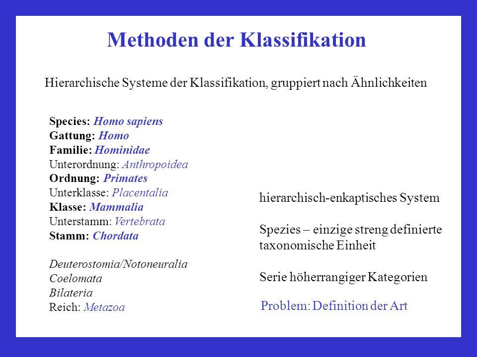 Methoden der Klassifikation