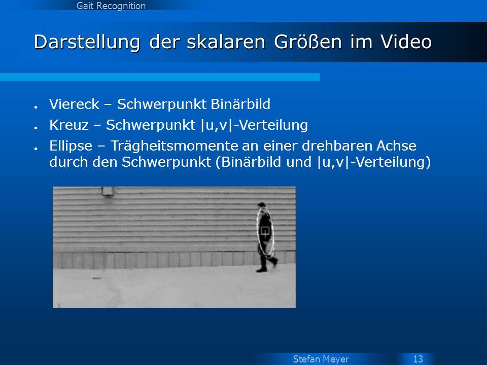 Darstellung der skalaren Größen im Video