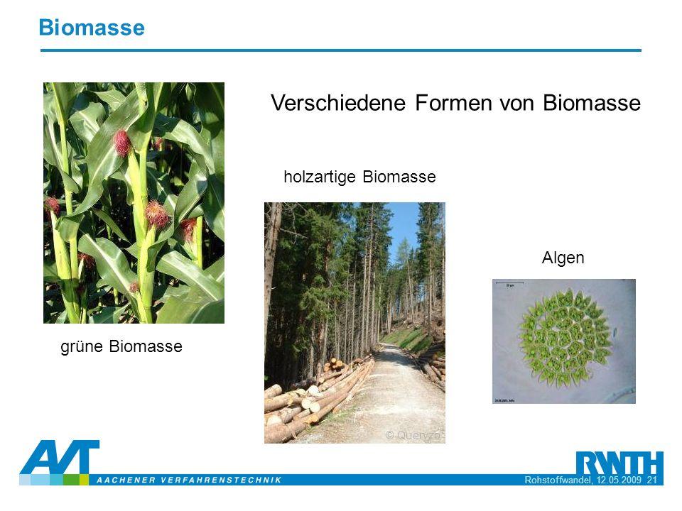 Verschiedene Formen von Biomasse