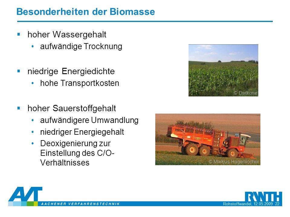 Besonderheiten der Biomasse