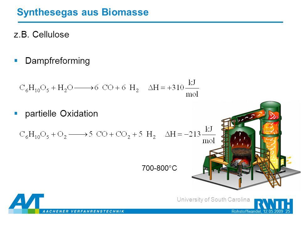 Synthesegas aus Biomasse