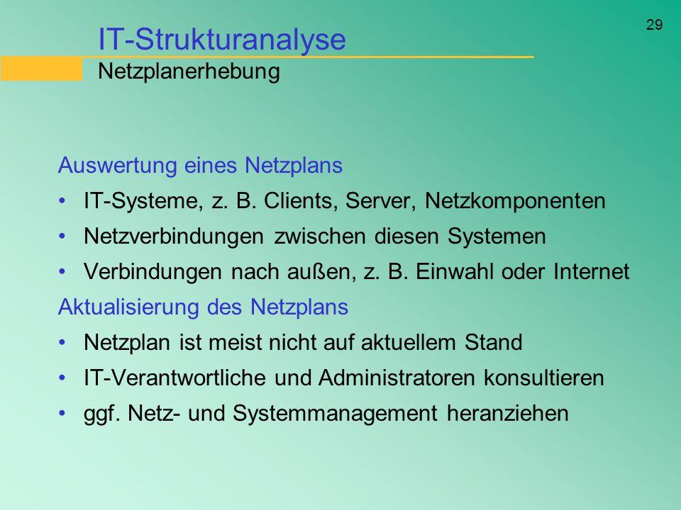 IT-Strukturanalyse Netzplanerhebung