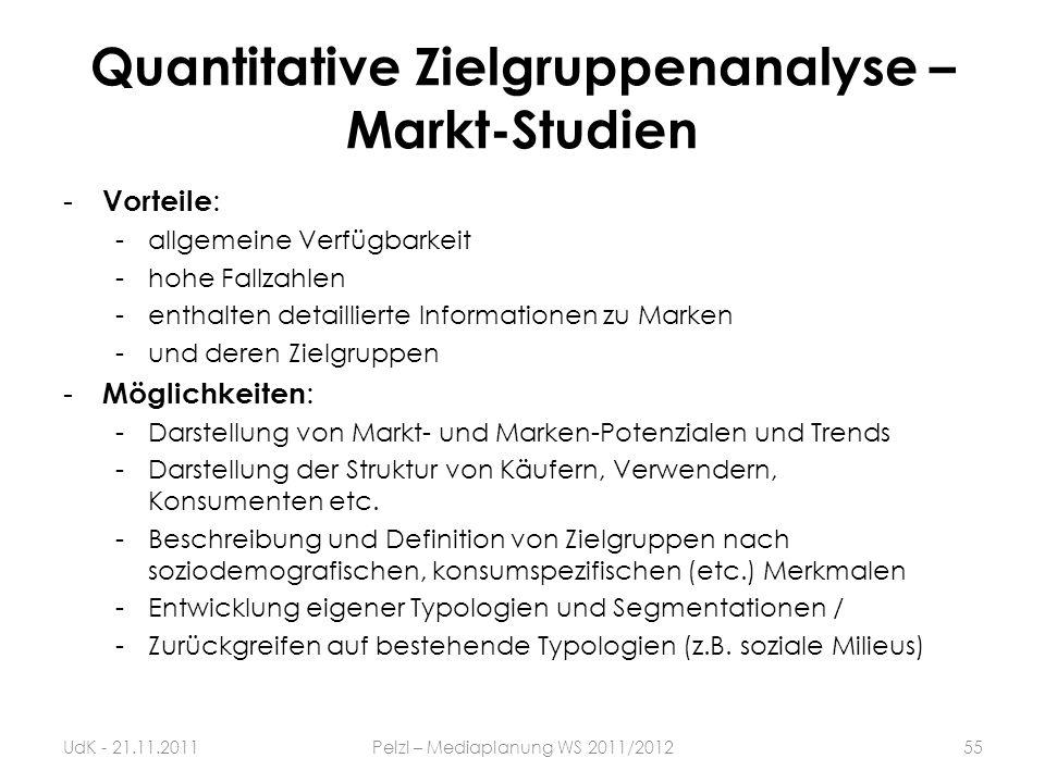 Quantitative Zielgruppenanalyse – Markt-Studien