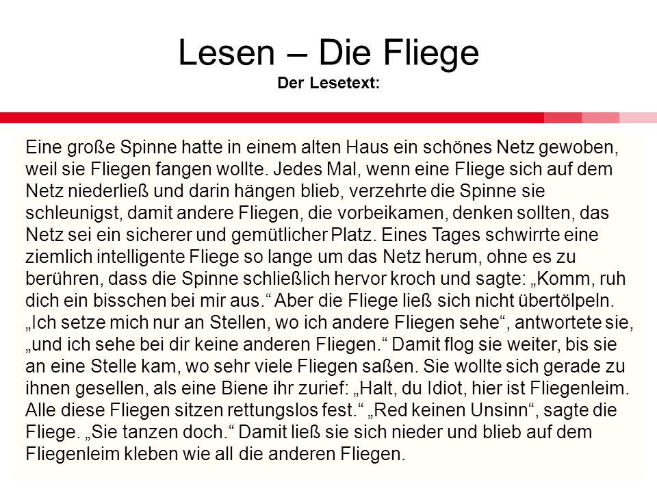 Lesen – Die Fliege Der Lesetext: