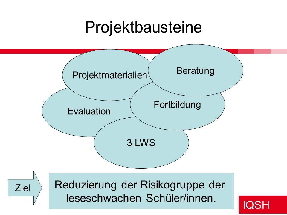 Projektbausteine Reduzierung der Risikogruppe der