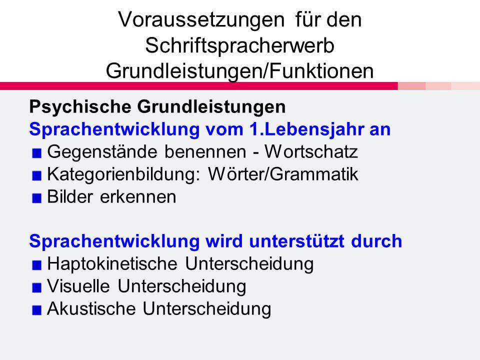 Voraussetzungen für den Schriftspracherwerb Grundleistungen/Funktionen