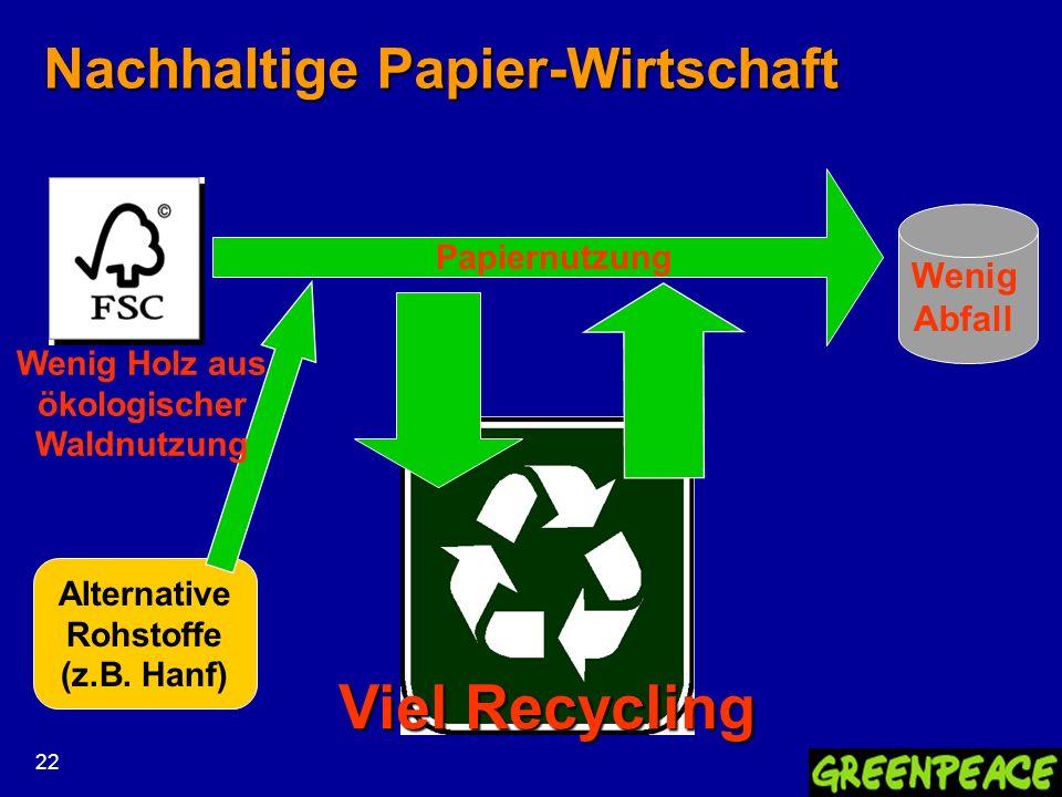 Nachhaltige Papier-Wirtschaft