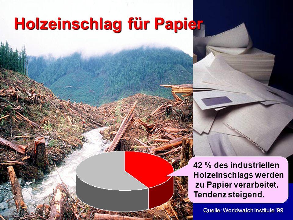 Holzeinschlag für Papier