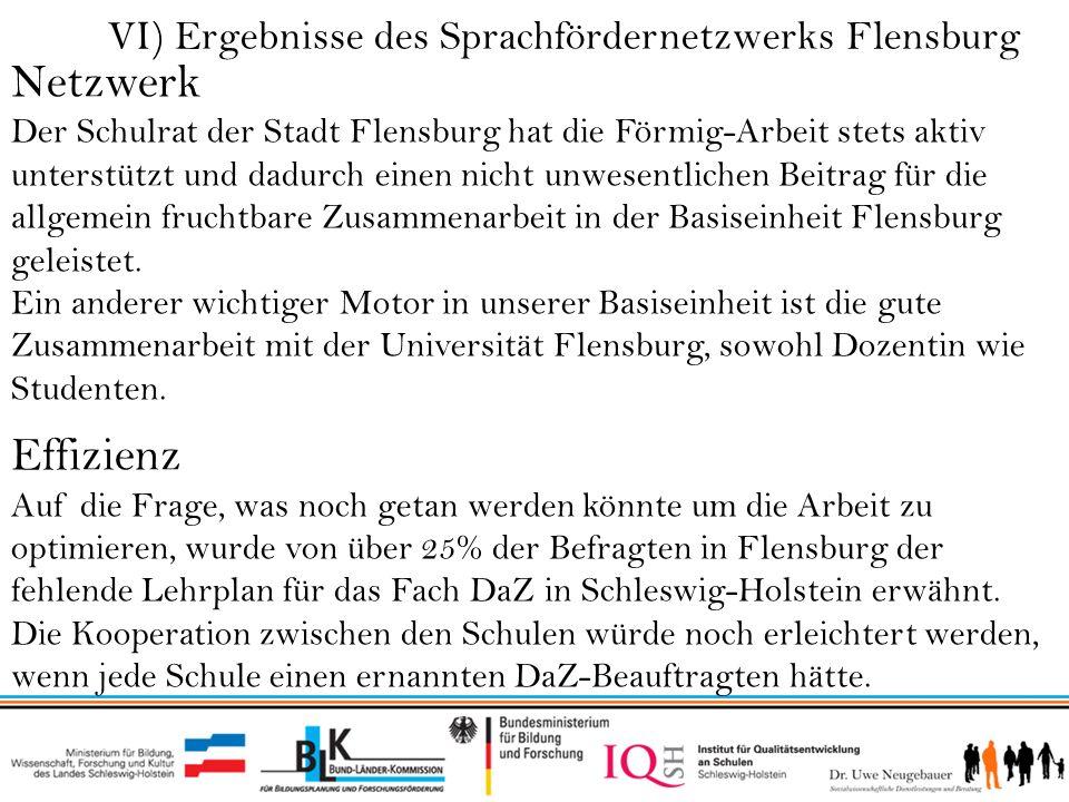 Netzwerk Effizienz VI) Ergebnisse des Sprachfördernetzwerks Flensburg