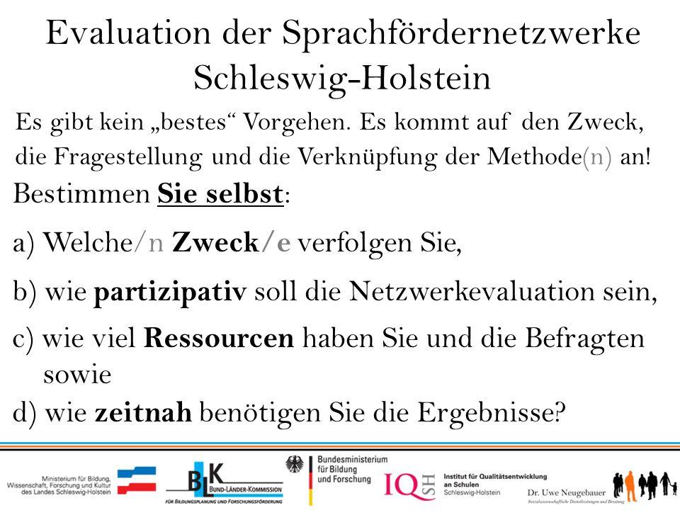 Evaluation der Sprachfördernetzwerke Schleswig-Holstein