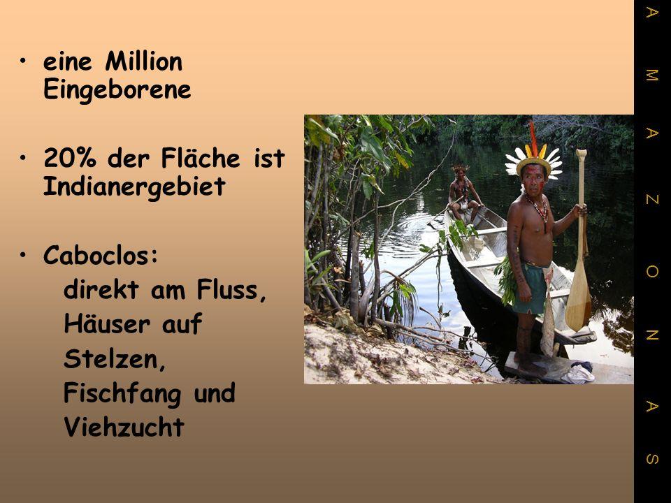 eine Million Eingeborene