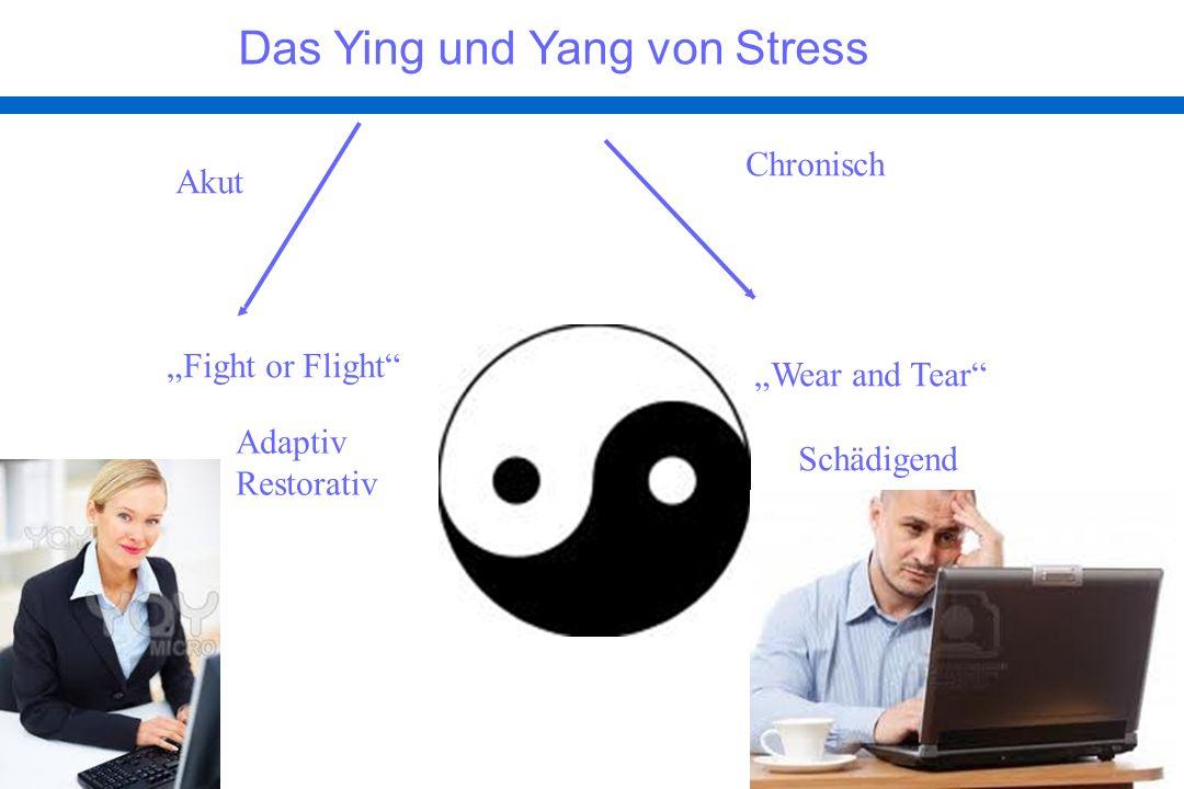 Das Ying und Yang von Stress