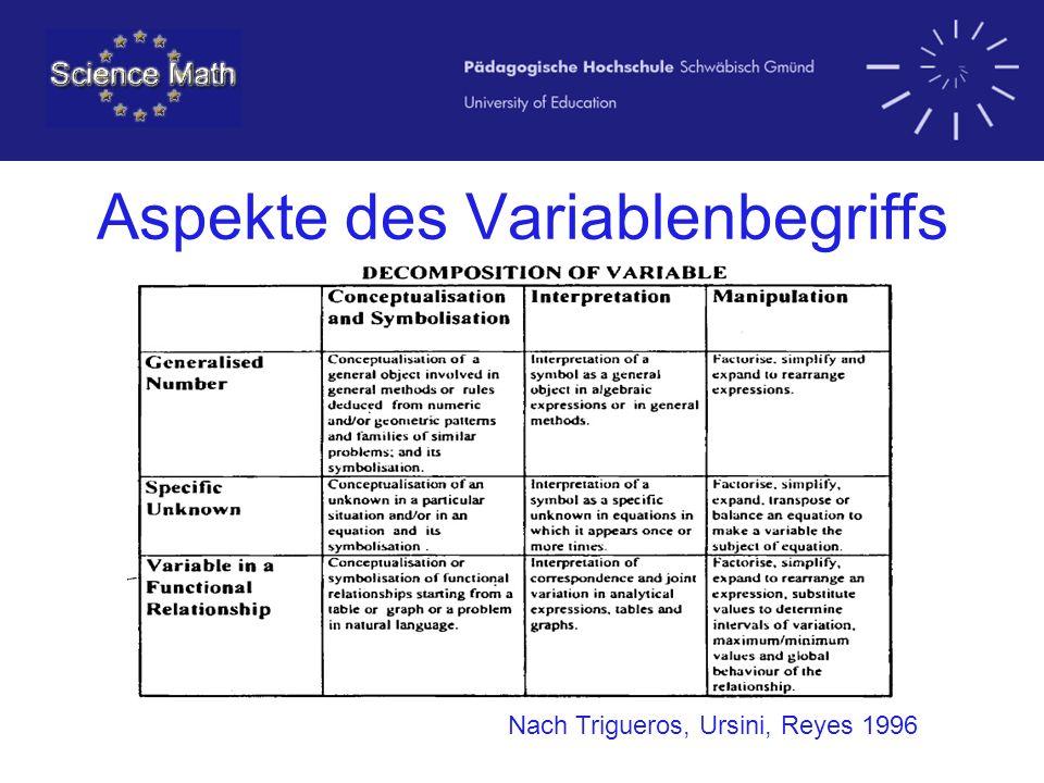 Aspekte des Variablenbegriffs