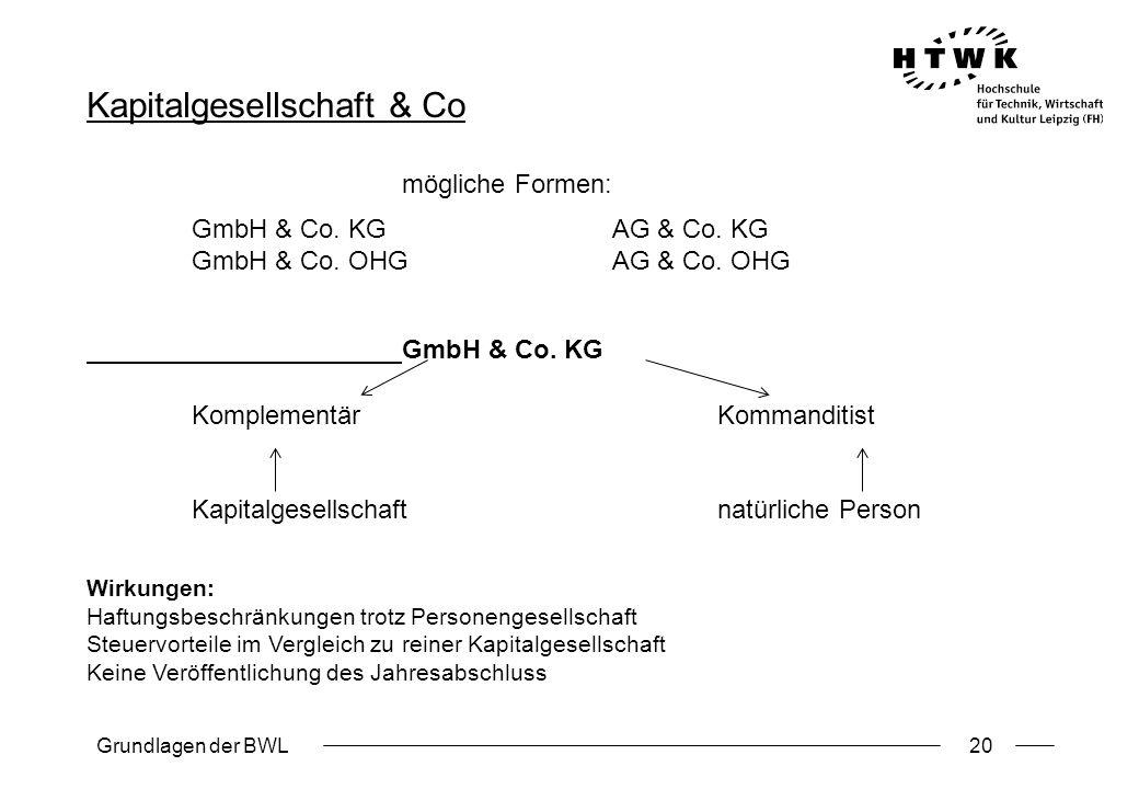 Kapitalgesellschaft & Co