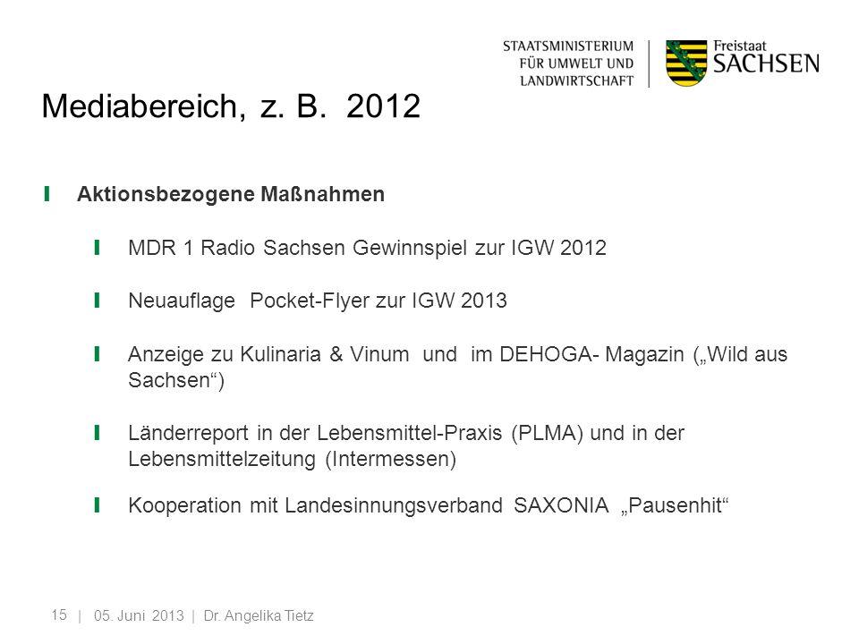 Mediabereich, z. B. 2012 Aktionsbezogene Maßnahmen