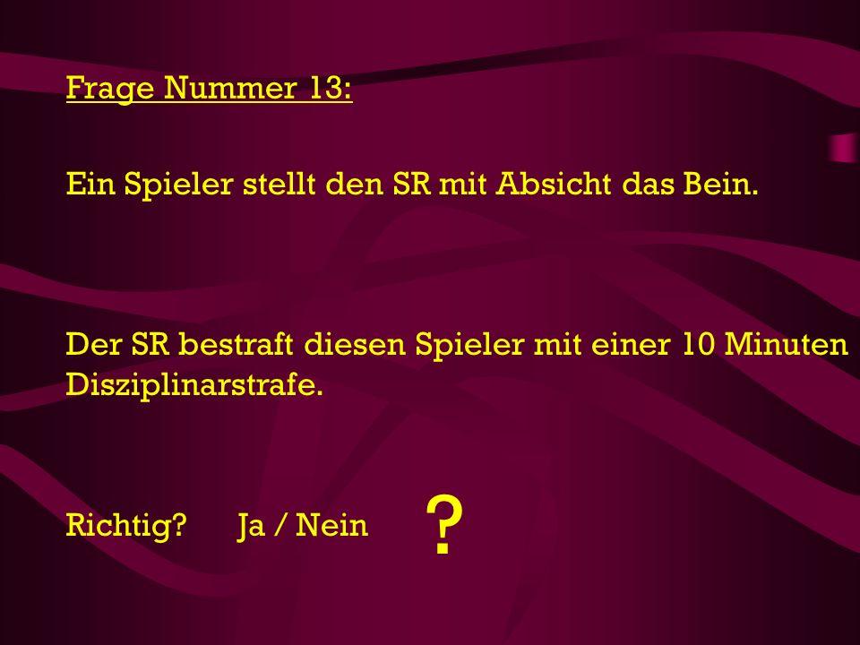 Frage Nummer 13: Ein Spieler stellt den SR mit Absicht das Bein.