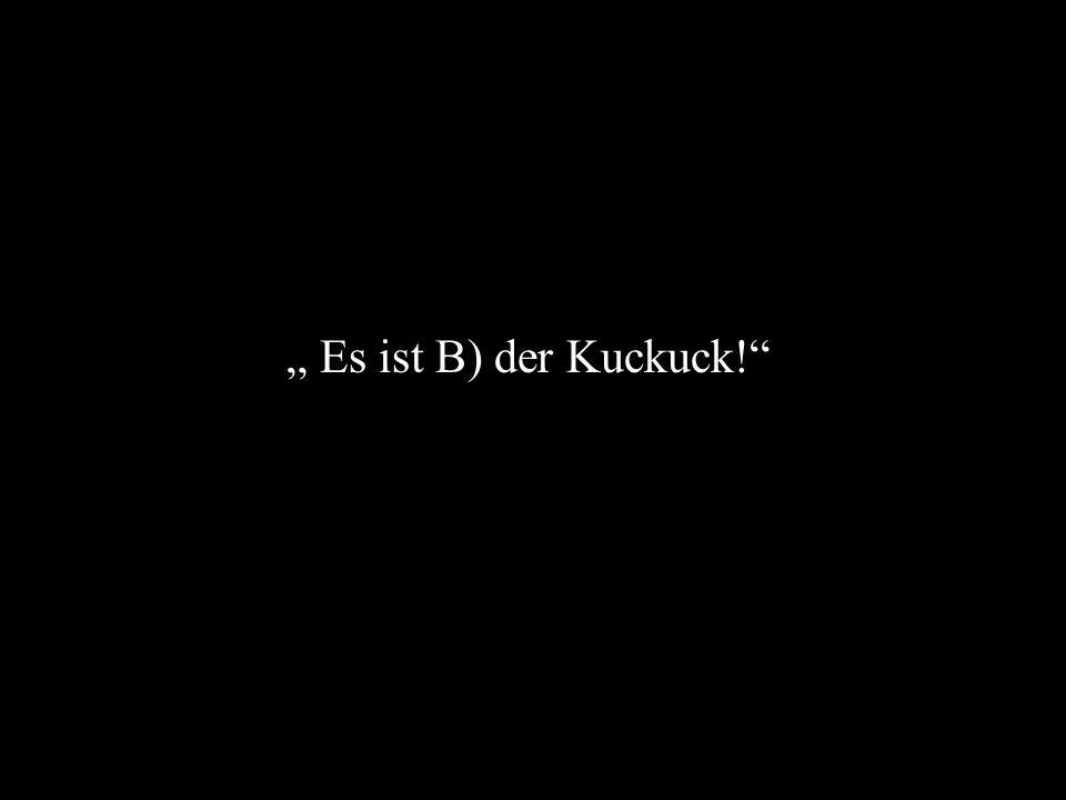 """"""" Es ist B) der Kuckuck!"""