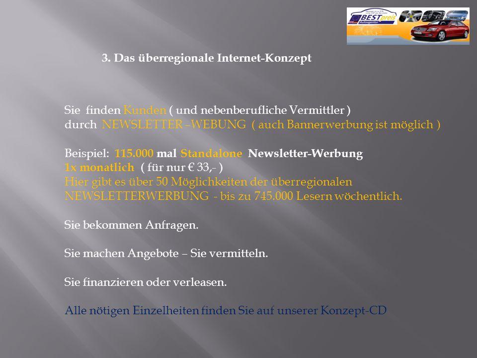 3. Das überregionale Internet-Konzept
