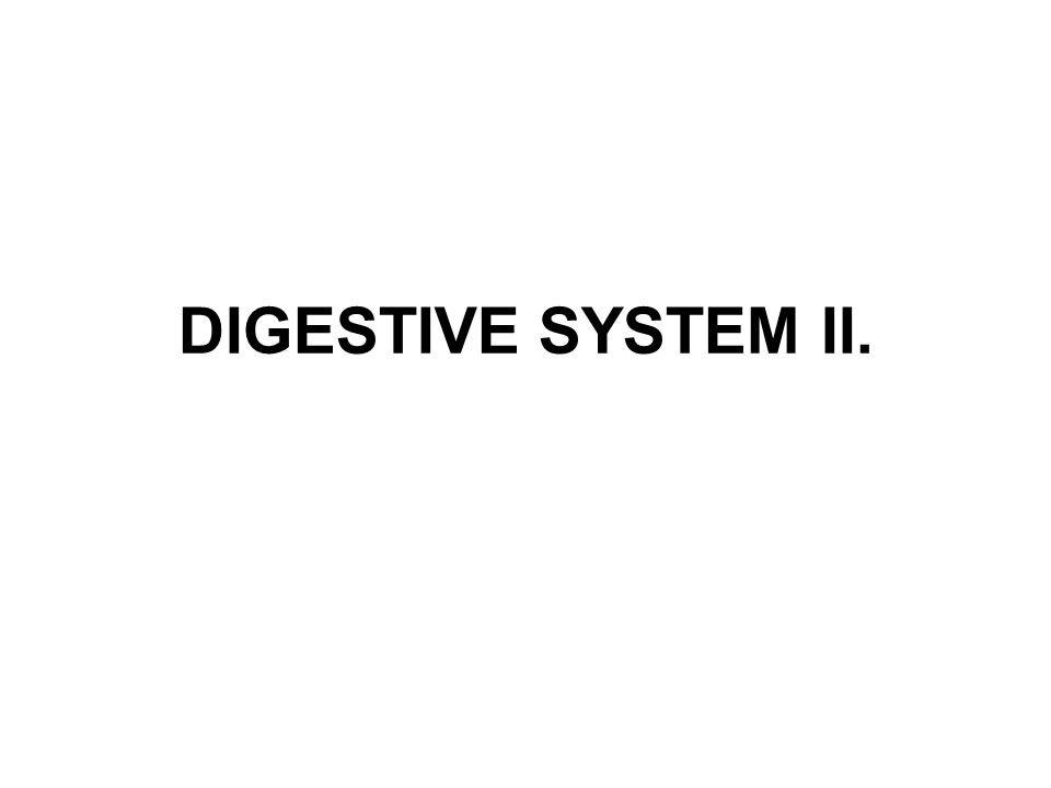 DIGESTIVE SYSTEM II.