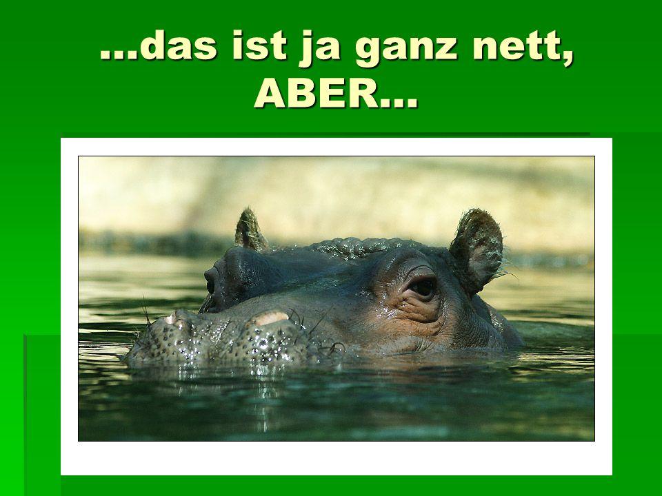 …das ist ja ganz nett, ABER…