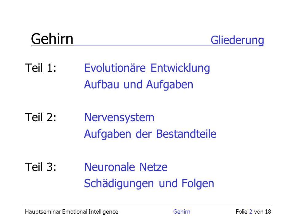 Gehirn Gliederung Teil 1: Evolutionäre Entwicklung Aufbau und Aufgaben