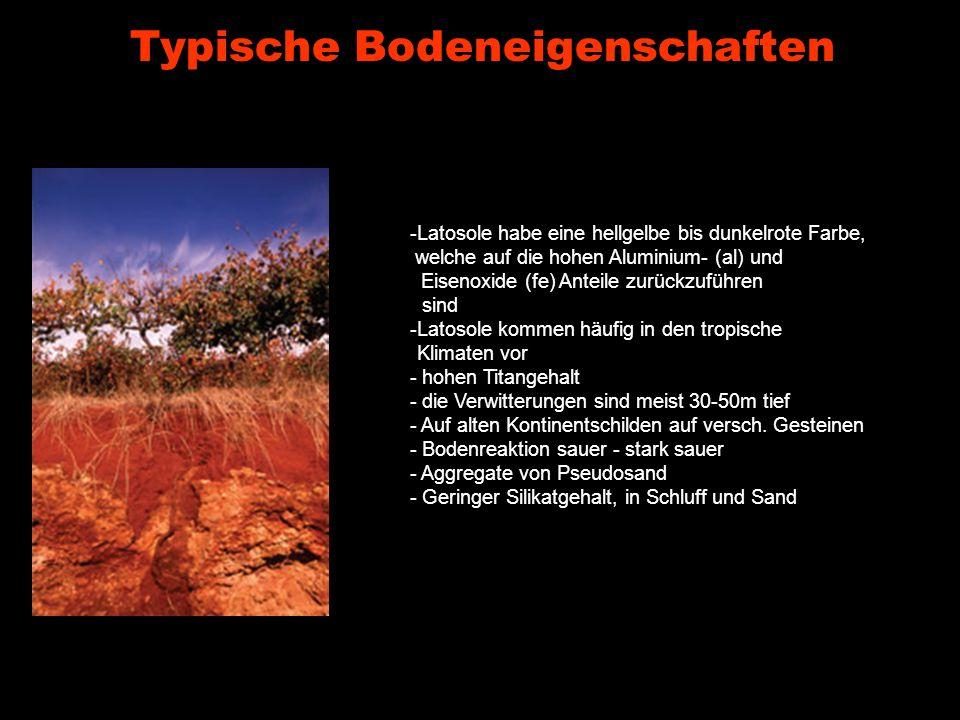 Typische Bodeneigenschaften
