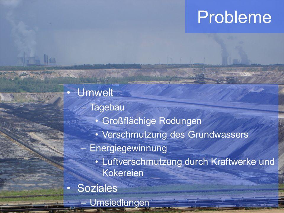 Probleme Umwelt Soziales Tagebau Großflächige Rodungen