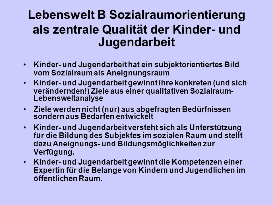 Lebenswelt B Sozialraumorientierung als zentrale Qualität der Kinder- und Jugendarbeit