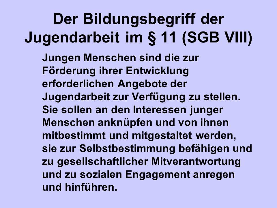Der Bildungsbegriff der Jugendarbeit im § 11 (SGB VIII)