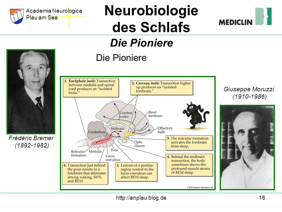 Neurobiologie des Schlafs