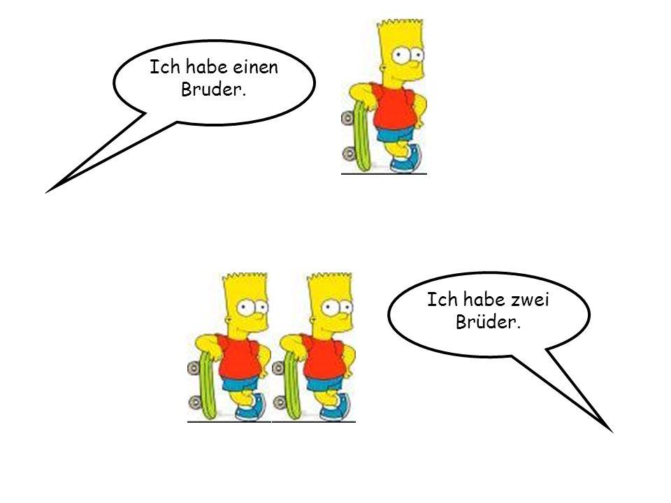Ich habe einen Bruder. Ich habe zwei Brüder.