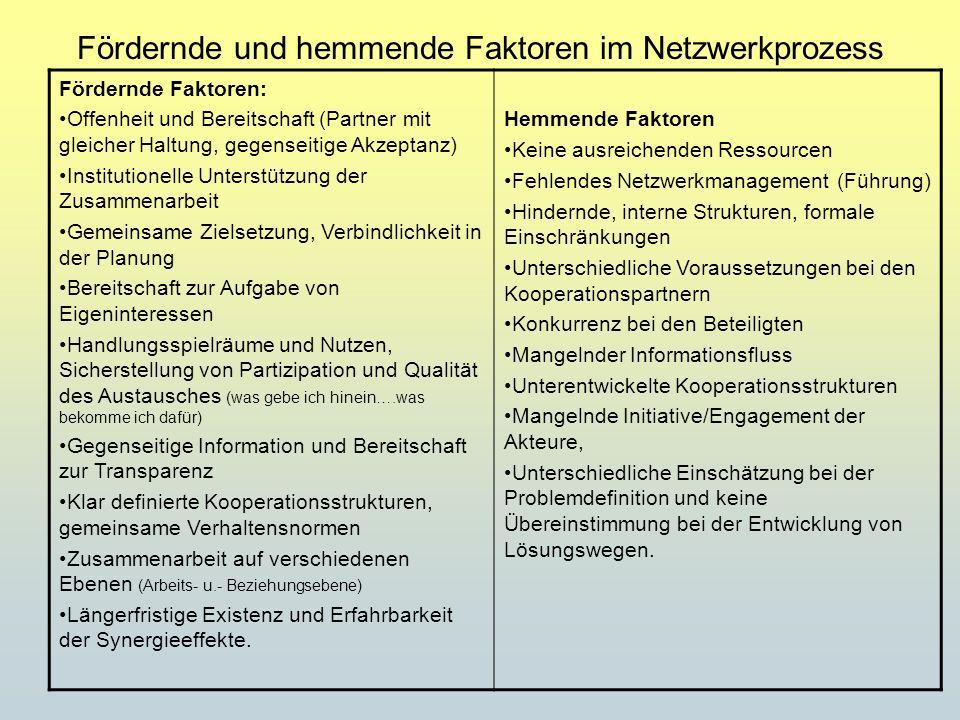 Fördernde und hemmende Faktoren im Netzwerkprozess