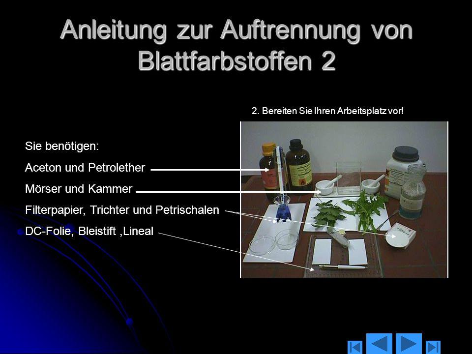 Anleitung zur Auftrennung von Blattfarbstoffen 2
