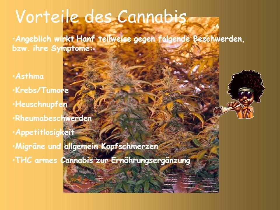 Vorteile des Cannabis Angeblich wirkt Hanf teilweise gegen folgende Beschwerden, bzw. ihre Symptome: