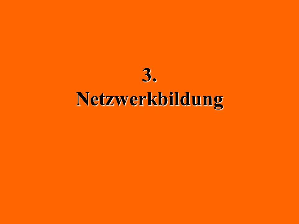 3. Netzwerkbildung